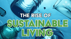 The Rise Of Sustainable Living and Sustainability